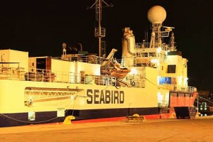 Foto: Seabird Exploration